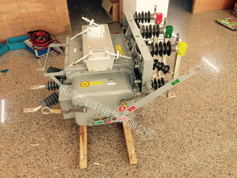 展示新颖产品ZW20-12FG销售