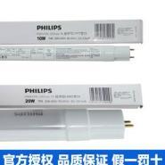飞利浦LED灯管 T8经济型图片