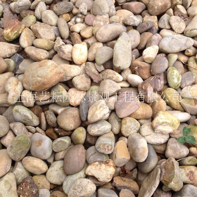 上海过滤鹅卵石'鹅卵石销售