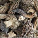 云南 野生羊肚菌 纯天然野生羊肚菌干货 干羊肚菌手工晒干及加工