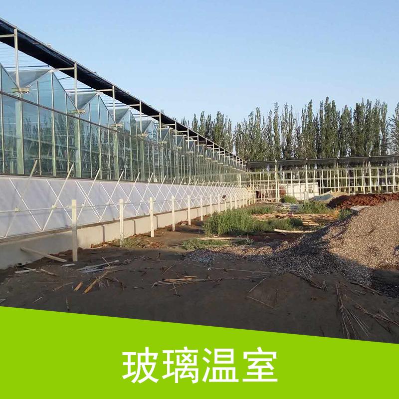 玻璃温室供应商   玻璃温室大棚 连栋温室大棚 智能温室 钢结构玻璃