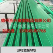 广州番禹UPE链条导轨厂家图片