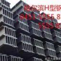 供应用于钢结构的哈尔滨H型钢,哈尔滨H型钢价格