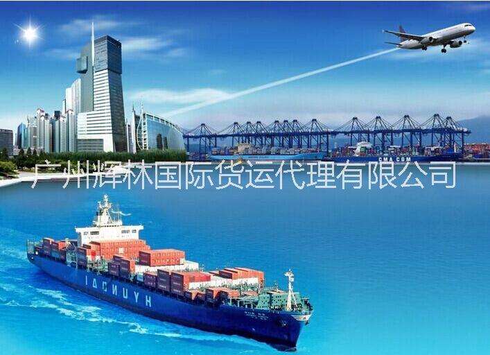 广州国际海运整柜、散货电话 国际海运专线