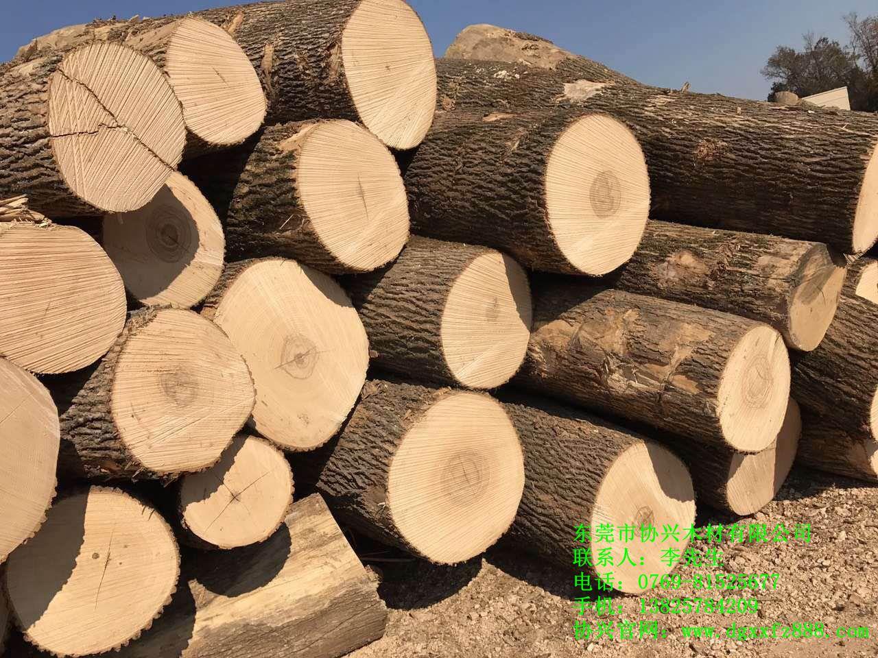 美国进口白蜡木|东莞家具木材厂|美国进口白蜡木价格