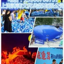 海洋球喷泉鲸鱼岛室内橡胶滑梯整套布展 鲸鱼岛室内海洋球