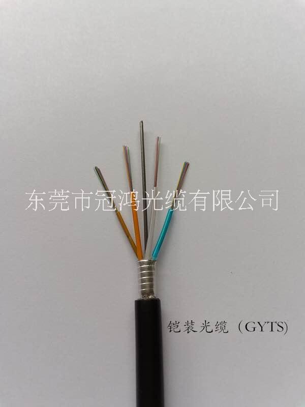 GYTS-12芯单模