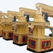 新一代木粉颗粒机生产线图片