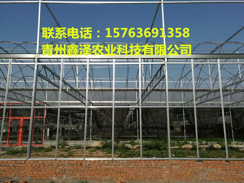 连栋智能温室、日光温室的生产厂家在哪里 智能温室大棚