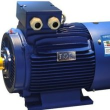 广州电机滚动轴承常见故障的修理各品牌进口电机销售