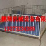 猪用保育栏|小猪活动床养猪设备|猪用活动床图片
