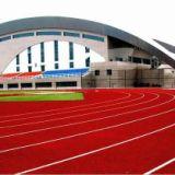PU聚氨酯跑道系列  体育地坪类