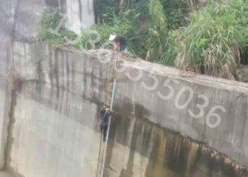 大坝检测图片