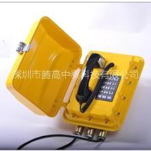 防水防潮扩音电话机 TG-HA-S4声光扩音电话机研发公司 专业扩音对讲电话机批发