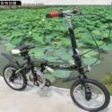 14寸自行车图片