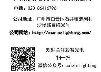 彩智光电C-Z22干冰车烟雾效果图片