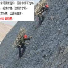 边坡主动防护网厂家直销四川边坡主动网价格施工(图片)