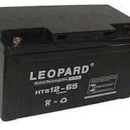 美洲豹蓄电池图片