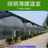 河北绿荫薄膜温室 大型连栋式热浸镀锌钢结构骨架塑料薄膜温室大棚