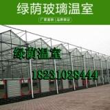 绿荫玻璃温室 钢结构骨架智能玻璃温室/冬季蔬菜种植玻璃温室大棚