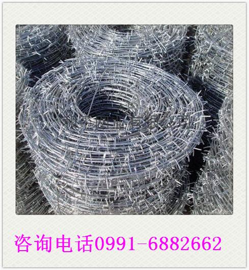 刺丝图片/刺丝样板图 (3)