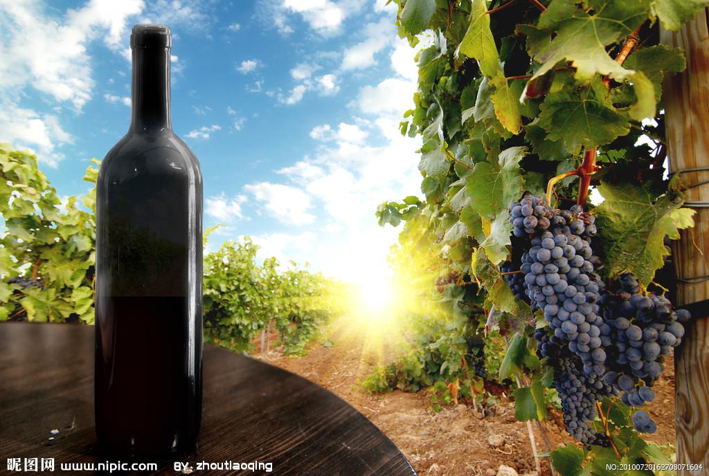 红酒进口报关|红酒进口清关|红酒进口代理|红酒进口流程|葡萄酒进口