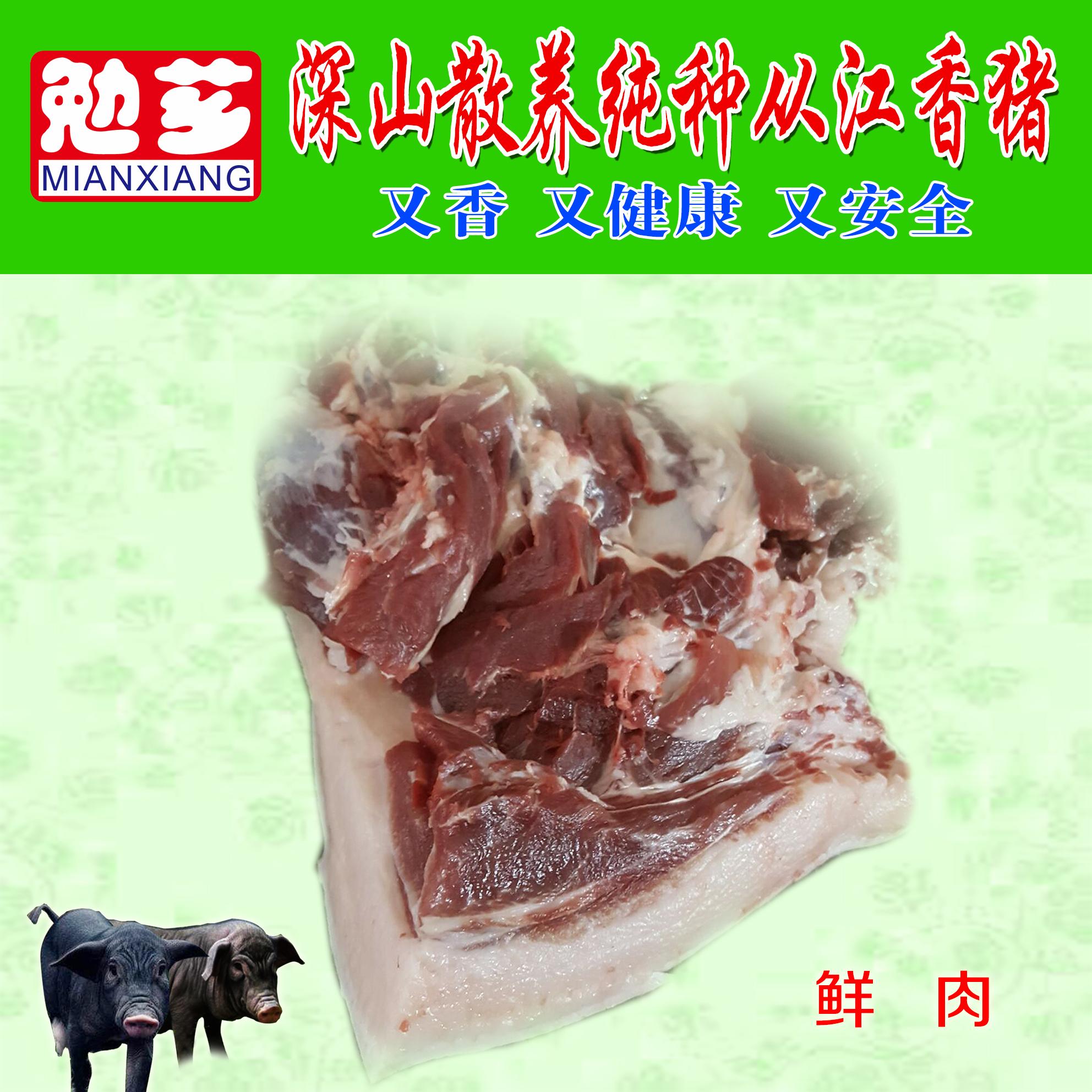 浙江香猪 报价鲜肉供应