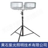 M2501高效升降式照明灯具,紫光照明M2501照明灯厂销