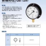 长野计器NKS压力表AE20-183系列 AE20-183-25MPa