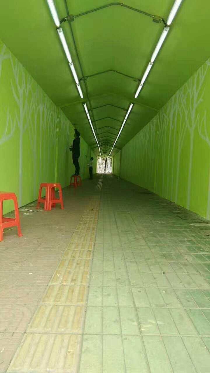 厦门墙绘,手绘壁画,3D手绘墙,