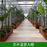 供应青岛花卉温室大棚_温室厂家_温室改造 青岛花卉温室大棚