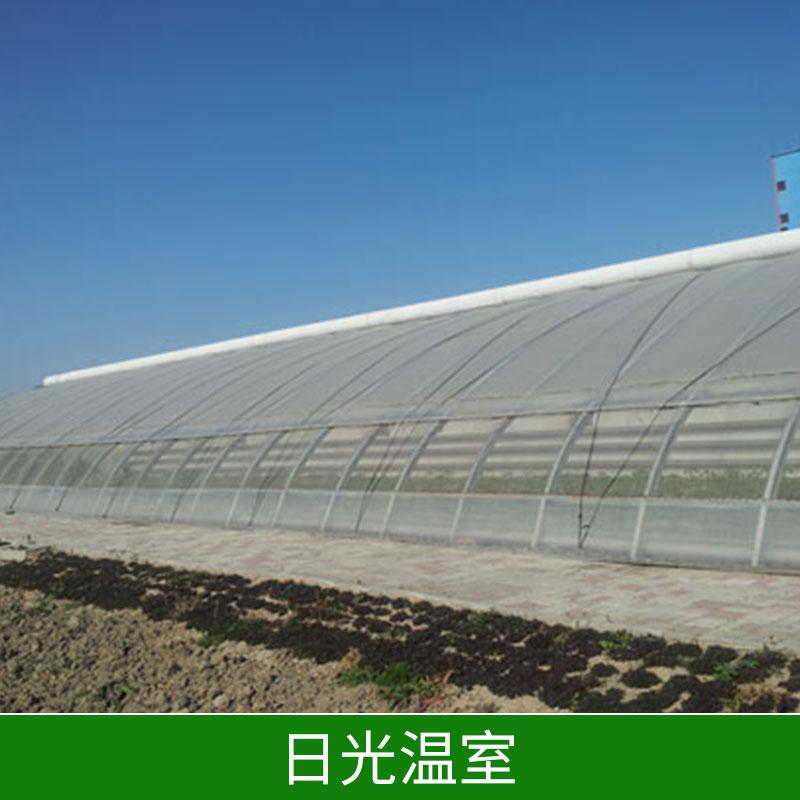 邯郸日光温室 河北日光温室工程  日光温室设计