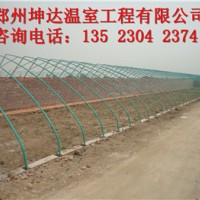 新型蔬菜温室大棚建造