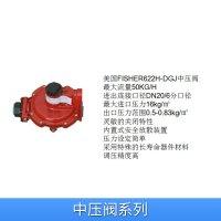 美国进口中压阀系列REGO调压器/煤气减压阀/液化气减压阀 图片 效果图