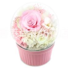 尚礼坊文艺小清新礼物玻璃球型永生花音乐盒日本进口永生玫瑰