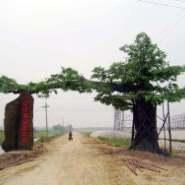 扬州假树大门做法图片