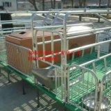 厂家直销畜牧养殖农业机械化设备 单体母猪产床