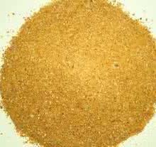 玉米副产品  优质的DDGS    山东DDGS