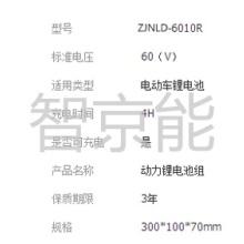 48V10安时动力锂电池