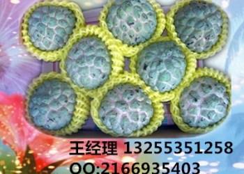 玫瑰花网套机,芒果蔬菜网套机图片