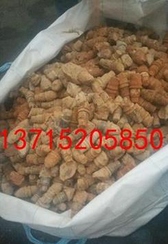 惠州电洛,线洛,CPU回收/收购图片/惠州电洛,线洛,CPU回收/收购样板图 (3)