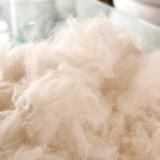 回收羊毛 回收库存羊毛厂家