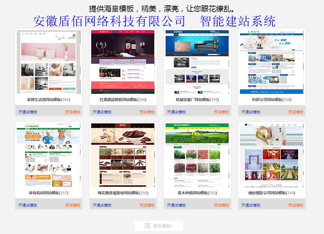 蚌埠网站建设 蚌埠网站制作500元起