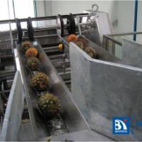 芒果菠萝加工生产线水果饮料生产线
