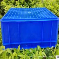 收纳塑料周转箱33#塑料箱530*335*80 塑料箱厂家批发