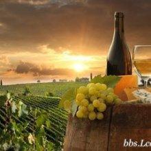 葡萄籽油上海进口清关公司