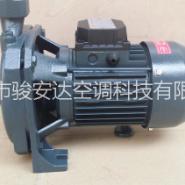 冷水机配套泵cm-100离心泵 铸铁增压泵 注塑机泵现货批发