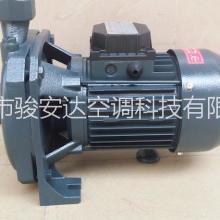 冷水机配套泵cm-100离心泵 铸铁增压泵 注塑机泵现货批发批发