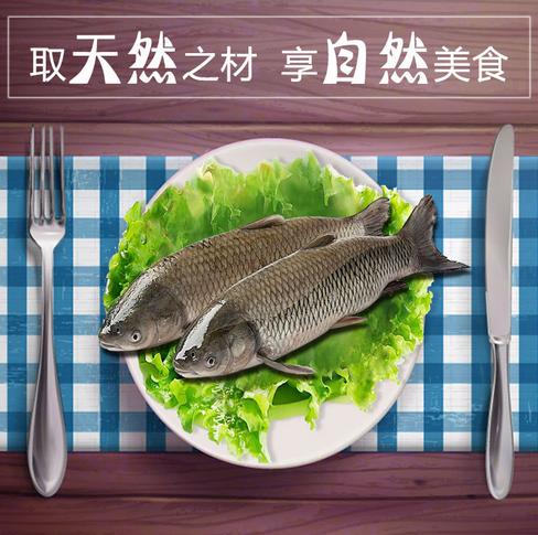 厂家养殖鲜活水产品原生态无污染食销售