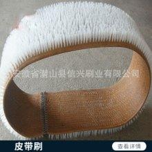 皮带刷 环形毛刷 皮带毛刷 皮带输送刷 各种长度各种宽度工业皮带刷 欢迎来电咨询批发